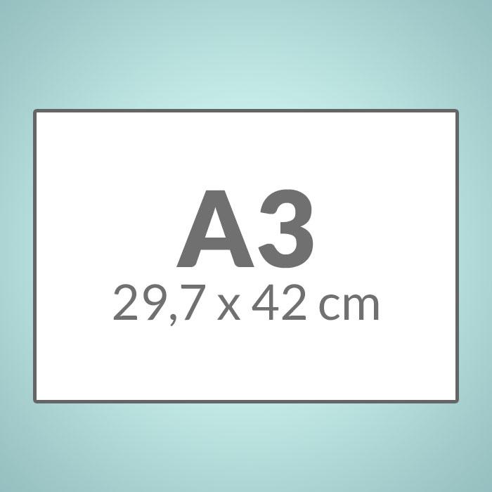 A3 (297 x 420 mm)