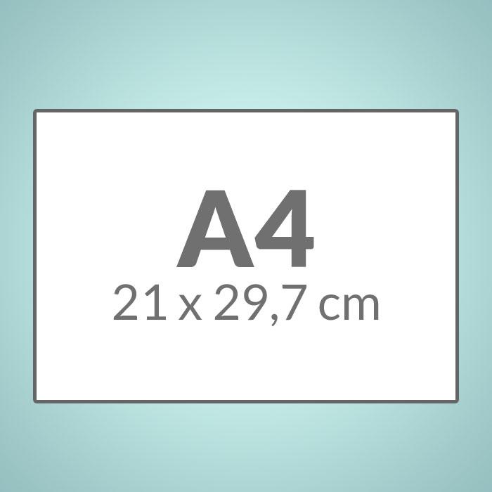 A4 (210 x 297 mm)
