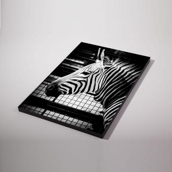 Fotopaneel zwart